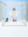 Experimentera på rått kött i steril kammare Royaltyfri Bild