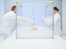 Experimenting with liquid nitrogen in the lab Stock Image