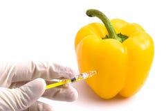 Experimento amarillo de la paprika Fotos de archivo