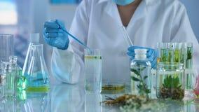 Experimento químico de fabricación experto del laboratorio, comprobando la reacción, industria de la perfumería metrajes