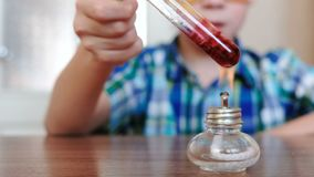 Experiments on chemistry at home. Closeup boy`s hands heats the test tube with red liquid on burning alcohol lamp. The. Liquid boils stock video footage