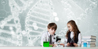 Experiments in laboratory royalty free stock photos