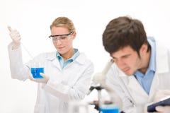 Experiência do vírus da gripe - cientista no laboratório Fotos de Stock Royalty Free