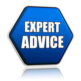 Expert advice in blue hexagon Stock Images