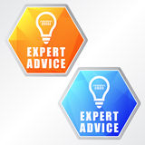 Expert advice and bulb symbols, two colors hexagons web icons Royalty Free Stock Photo