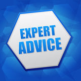 Expert advice in hexagon, flat design Royalty Free Stock Photo