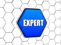 Expert in blue hexagon Royalty Free Stock Photography