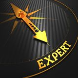 Expert. Business Background. Expert - Business Background. Golden Compass Needle on a Black Field Pointing to the Word Expert. 3D Render Stock Photography