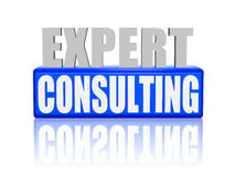 Expert consulting in 3d letters and block Royalty Free Stock Images
