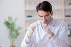 The expert criminologist working in the lab for evidence. Expert criminologist working in the lab for evidence royalty free stock photo