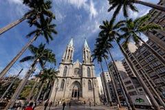 Expert en logiciel de CATEDRAL DA - Sao Paulo/cathédrale métropolitaine - le Brésil Photo stock