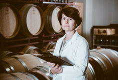 Expert examines equipment at winery Stock Image