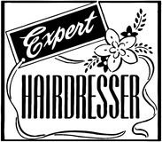 Expert Hairdresser Royalty Free Stock Image