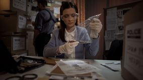 Expert lady examining bloody knife from murder scene, professional scientist royalty free stock photography