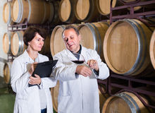 Expert and maker estimate wine Royalty Free Stock Image