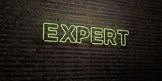 EXPERT -Realistic Neon Sign on Brick Wall background - 3D rendered royalty free stock image Royalty Free Stock Images