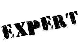 Expert rubber stamp Royalty Free Stock Image