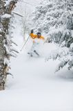 Expert skier skiing powder snow in Stowe, Vermont,. Expert skier skiing in deep powder snow in front of a frozen waterfall, Mt. Mansfield, Stowe, Vermont, USA Royalty Free Stock Images