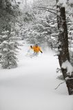 Expert skier skiing powder snow in Stowe, Vermont,. Expert skier skiing in deep powder snow in the trees, Mt. Mansfield, Stowe, Vermont, USA Stock Images