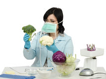 Expert viewing closely at a broccoli and cauliflower Stock Images