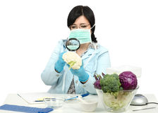 Expert viewing closely a cauliflower in laboratory Stock Photo