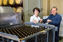 Expert and wine maker inspect containers with bottles Stock Photography