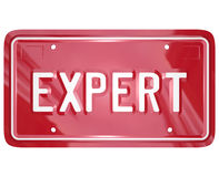 Expert Word License Plate Car Mechanic Engineer Technician Repai. Expert word on red car license plate to illustrate the skills and expertise of an automotive Stock Photo