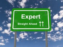 experte Lizenzfreie Stockbilder