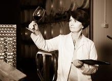 Experte schätzt Qualität des Rotweins auf Weinkellerei Lizenzfreies Stockfoto