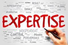 expertise image libre de droits