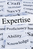 Expertise Concept. A conceptual look at expertise, ability, knowledge, proficiency, savvy royalty free stock image