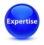 Expertise glassy blue round button. Expertise isolated on glassy blue round button abstract illustration vector illustration