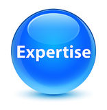 Expertise glassy cyan blue round button Stock Image