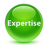 Expertise glassy green round button Royalty Free Stock Photography