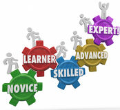 Expertise Levels Novice Learning Skilled Advanced People Climbin. Expertise words on gears as people or workers march up to gain experience and knowledge Stock Images