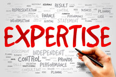 EXPERTISE. Word cloud, business concept royalty free stock image