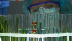Experto del laboratorio que vierte el líquido rojo en el tubo con la sustancia aceitosa, extracto de la perfumería almacen de video