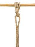 Expida las cuerdas con un nudo aislado en blanco Imagenes de archivo