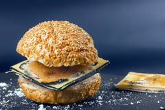 Expired Fast food. Bun for Burger and spoiled cheese. Harmful da. Expired Fast food. Bun for Burger rand spoiled cheese. Harmful dangerous unwholesome food Royalty Free Stock Photos