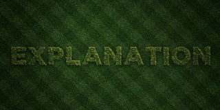 EXPLANATION - fresh Grass letters with flowers and dandelions - 3D rendered royalty free stock image Royalty Free Stock Image