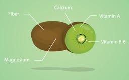 Explicación de la nutrición del kiwi con estilo plano Imagen de archivo