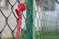 Exploded balloon hanging on green wire mesh. Green wire mesh fence exploded balloon hanging Stock Image