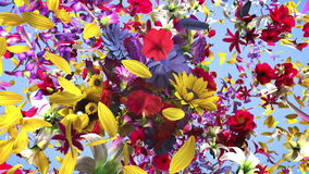 Exploderande färgrika blommor royaltyfri illustrationer