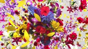 Exploderande färgrika blommor stock illustrationer