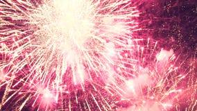 Exploderande fyrverkerier i natthimlen stock video
