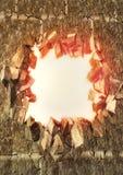 Exploderande vägg Arkivfoton