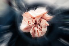 Exploding airbag Stock Image