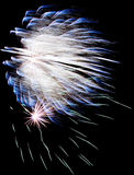 Exploding blue fireworks Royalty Free Stock Image