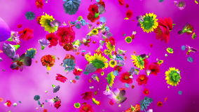 Exploding colorful flowers