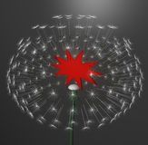 Exploding dandelion with red label Stock Photos